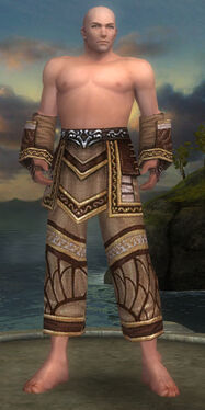 Monk Elite Canthan Armor M gray arms legs front