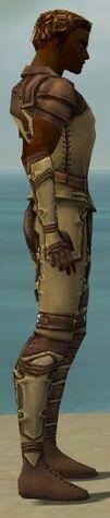 File:Ranger Ascalon Armor M dyed side alternate.jpg