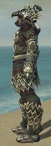File:Warrior Silver Eagle Armor M gray side.jpg