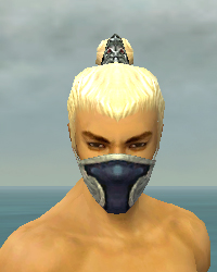 File:Assassin Norn Armor M dyed head front.jpg