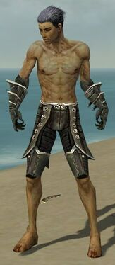Necromancer Elite Kurzick Armor M gray arms legs front