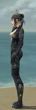 Necromancer Krytan Armor F gray side