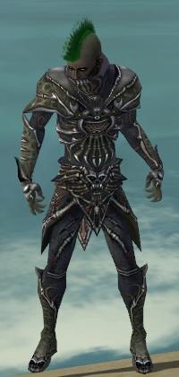 File:Necromancer Elite Necrotic Armor M gray front.jpg
