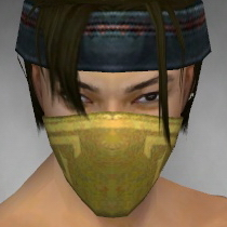File:Assassin Shing Jea Armor M dyed head front.jpg