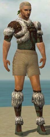 File:Ranger Elite Fur-Lined Armor M gray chest feet front.jpg