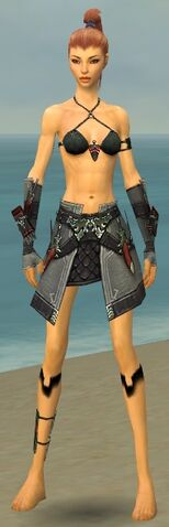 File:Assassin Elite Canthan Armor F gray arms legs front.jpg
