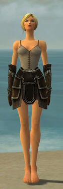 Warrior Shing Jea Armor F gray arms legs front