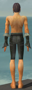 Elementalist Elite Canthan Armor M gray arms legs back