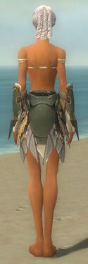 Paragon Norn Armor F gray arms legs back