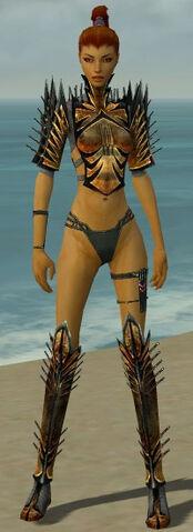 File:Assassin Elite Exotic Armor F gray chest feet front.jpg