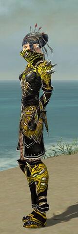 File:Necromancer Elite Luxon Armor F dyed side.jpg
