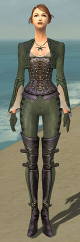 File:Mesmer Rogue Armor F gray front.jpg