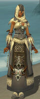 Dervish Norn Armor F gray front