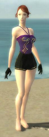 File:Mesmer Elite Sunspear Armor F gray arms legs front.jpg