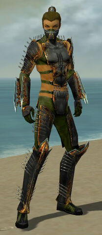 File:Assassin Exotic Armor M dyed front.jpg