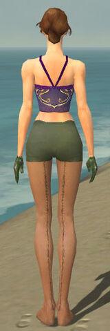 File:Mesmer Enchanter Armor F gray arms legs back.jpg