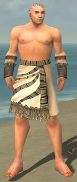 Monk Istani Armor M gray arms legs front