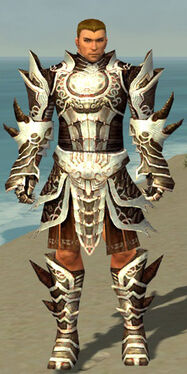 Warrior Monument Armor M nohelmet