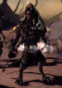 Minion of joko (Necromancer)