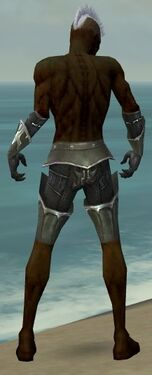 Necromancer Tyrian Armor M gray arms legs back
