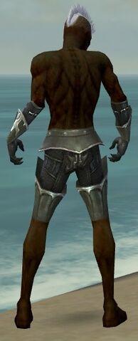File:Necromancer Tyrian Armor M gray arms legs back.jpg