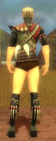 File:Ritualist Elite Canthan Armor M gray chest feet back.jpg
