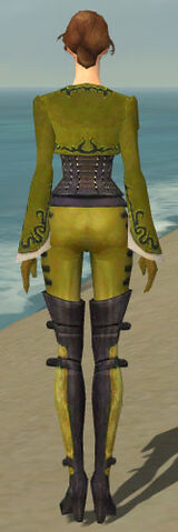 File:Mesmer Rogue Armor F dyed back.jpg