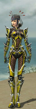 Necromancer Elite Kurzick Armor F dyed front