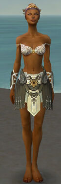 Paragon Elite Sunspear Armor F gray arms legs front