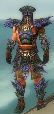 File:Warrior Luxon Armor M dyed front.jpg