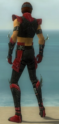 File:Assassin Luxon Armor M dyed back.jpg