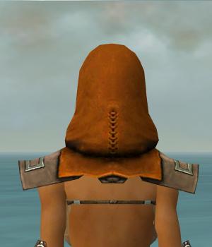 File:Dervish Istani Armor F dyed head back.jpg
