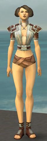 File:Monk Censor Armor F gray chest feet front.jpg