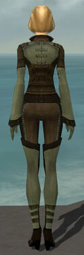 Mesmer Istani Armor F gray back