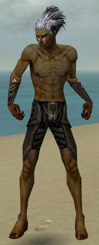 File:Necromancer Istani Armor M gray arms legs front.jpg