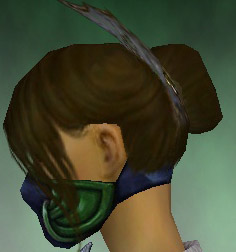 File:Assassin Norn Armor F dyed head side.jpg