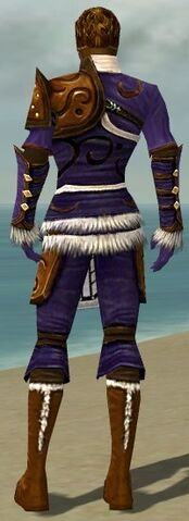 File:Ranger Canthan Armor M dyed back.jpg