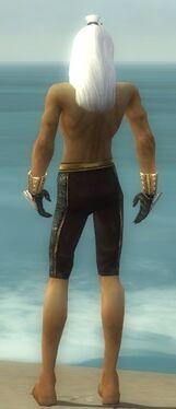 Elementalist Elite Sunspear Armor M gray arms legs back