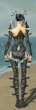 Necromancer Profane Armor F gray back
