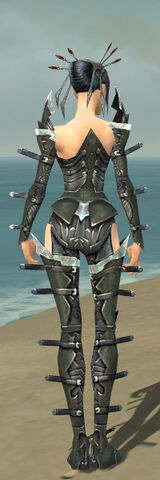 File:Necromancer Profane Armor F gray back.jpg