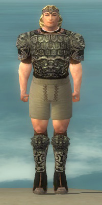 File:Warrior Canthan Armor M gray chest feet front.jpg