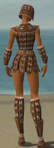 File:Warrior Ascalon Armor F dyed back.jpg