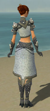 Elementalist Stoneforged Armor F gray back