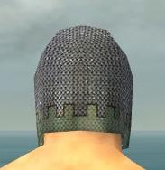 File:Warrior Tyrian Armor M gray head back.jpg
