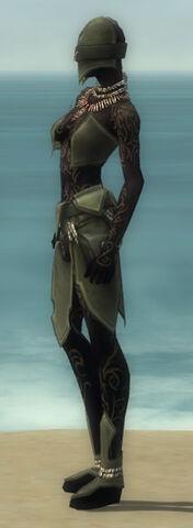 File:Ritualist Kurzick Armor F gray side.jpg