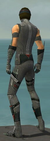 File:Assassin Canthan Armor M gray back.jpg