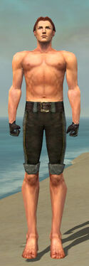 Mesmer Tyrian Armor M gray arms legs front
