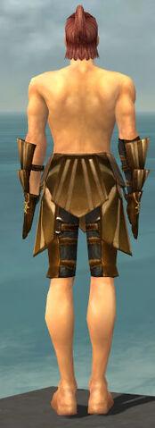 File:Ranger Sunspear Armor M gray arms legs back.jpg