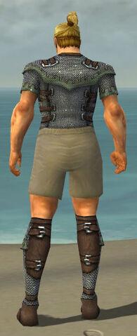 File:Warrior Tyrian Armor M gray chest feet back.jpg