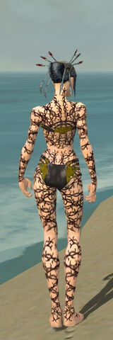 File:Necromancer Elite Scar Pattern Armor F dyed back.jpg